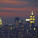 New York City  by Alberto  DeJesus