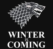 Winter is Coming Kids Clothes