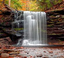 Harrison Wright Falls As Autumn Arrives by Gene Walls
