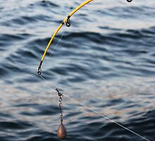 Bait and Hook by Christine Bottomly