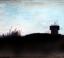 Ocean of Secrets by Susan Werby