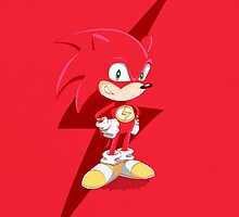 Flash, The Hedgehog by Donnie Illustration