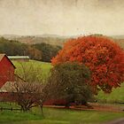 Fall on the Farm by vigor