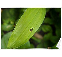 Leaf's Heart Poster