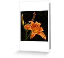 Sunny and Bright Greeting Card