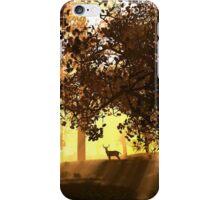 Glenwood iPhone Case/Skin
