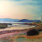 Sunset over Bernacchi Creek and the Silos, Maria Island. by melhillswildart
