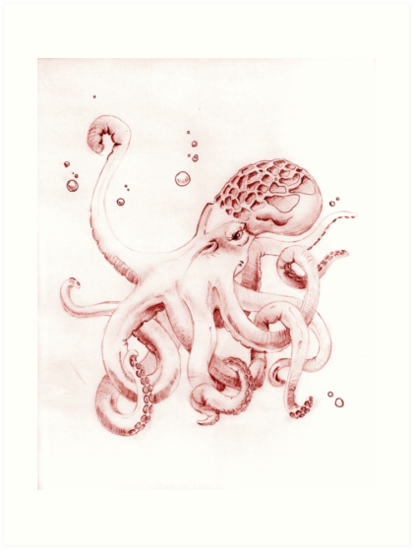 Hand Drawn Octopus by viridiansong