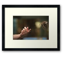 Setting Free Framed Print