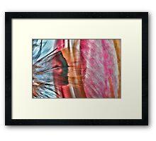 Paint My Tulip Framed Print