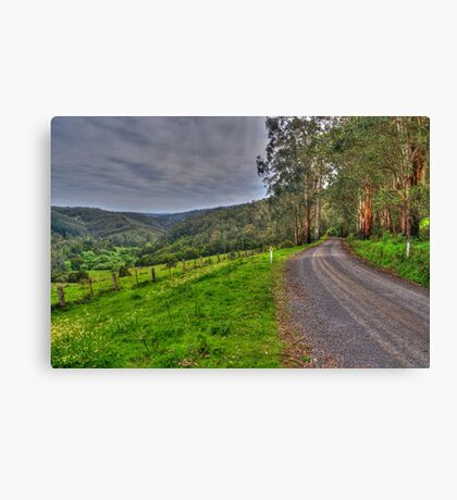 Barramunga Landscape Canvas Print