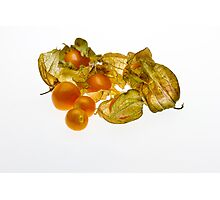 Gooseberries Photographic Print