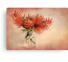Bottle Brush! Canvas Print