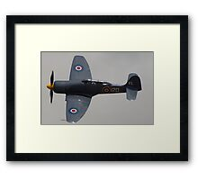 RNHF Sea Fury  Framed Print