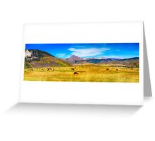 Cattle Grazing Autumn Panorama Greeting Card