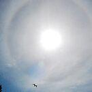 Sun Halo Effect by Maksim Lazarenko