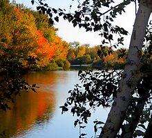 And The Air Was So Crisp. Boise River Running Through Star, Idaho  by trueblvr
