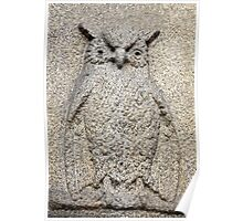 owl granite relief Poster