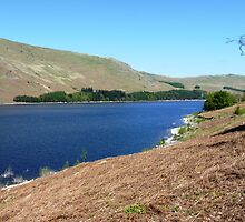 Haweswater, Cumbria #2 by acespace