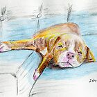 Cute Little Pit Bull Puppy Sleeping on Couch - Painted Sketch by ibadishi