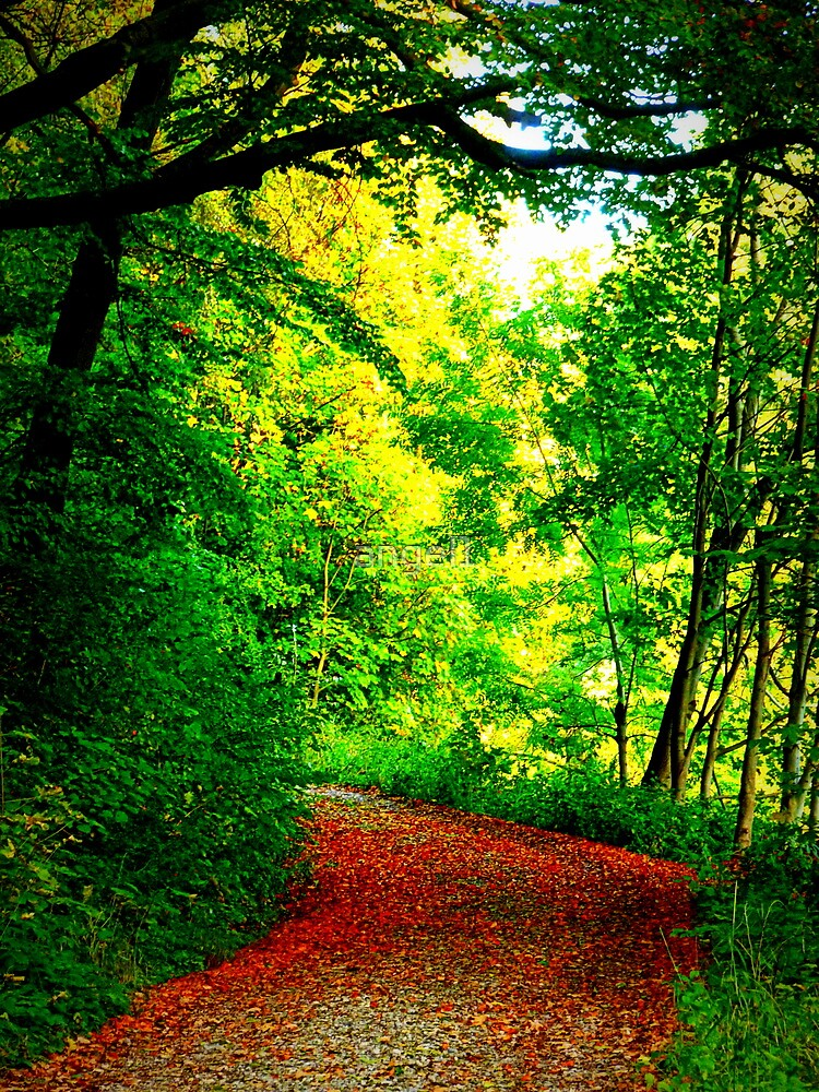 Nature's Copper Carpet by ©The Creative  Minds