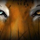 Max Scherzer Tiger, Thin by Glenn Martin
