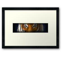 Max Scherzer Tiger, Thin Framed Print