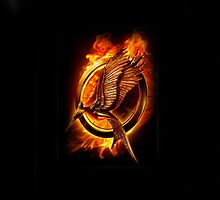The Hunger Games: Catching Fire - Logo by dellycartwright