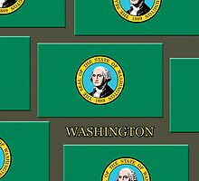 Iphone Case - State Flag of Washington VI by Mark Podger