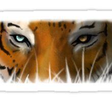 Max Scherzer Tiger, Thin Sticker