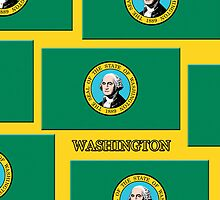 Iphone Case - State Flag of Washington VIII by Mark Podger