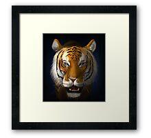 Max Scherzer Tiger, Full Framed Print