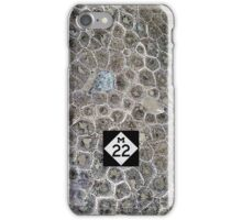 Petoskey Stone, M22 iPhone Case/Skin