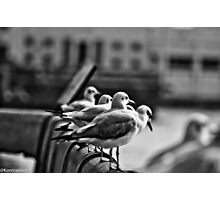 He who has a why to live can bear almost any how. Friedrich Nietzsche... Got Featured Work:) Photographic Print