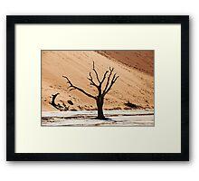 Dead Vlei in Namib Desert Framed Print