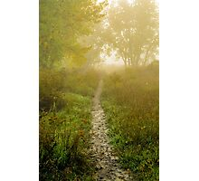 Morning Walk Photographic Print