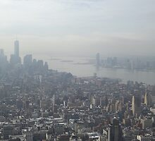 Aerial View of New World Trade Center, Lower Manhattan, Hudson River, As Seen From Empire State Building Observation Deck, New York City by lenspiro