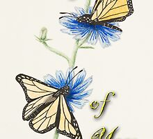 Thinking of You Butterflies by jkartlife