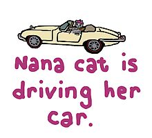 Nana cat driving by MaryMcCrazy