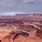 Meander Overlook - Canyonlands National Park by Barbara Burkhardt