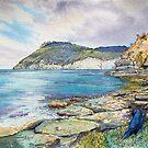 Fossil Cliffs, Maria Island by melhillswildart