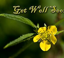Get Well Soon Buttercup by jkartlife