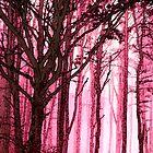 Trees by John Novis