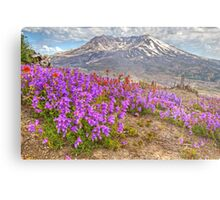 Color from Chaos - Mt. St. Helens Metal Print