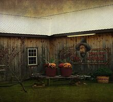 The country place by vigor