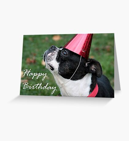 All ready for the party Greeting Card