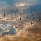 Sunset Reflection by Jean-Pierre Ducondi