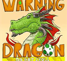 Warning, Dragon, Do not cross by maugryph