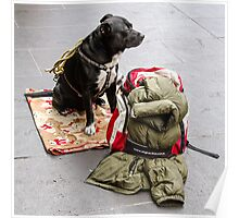 Guarding my Christmas Back Pack, Bourke St  Poster