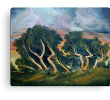 Cyprus trees oil painting Canvas Print